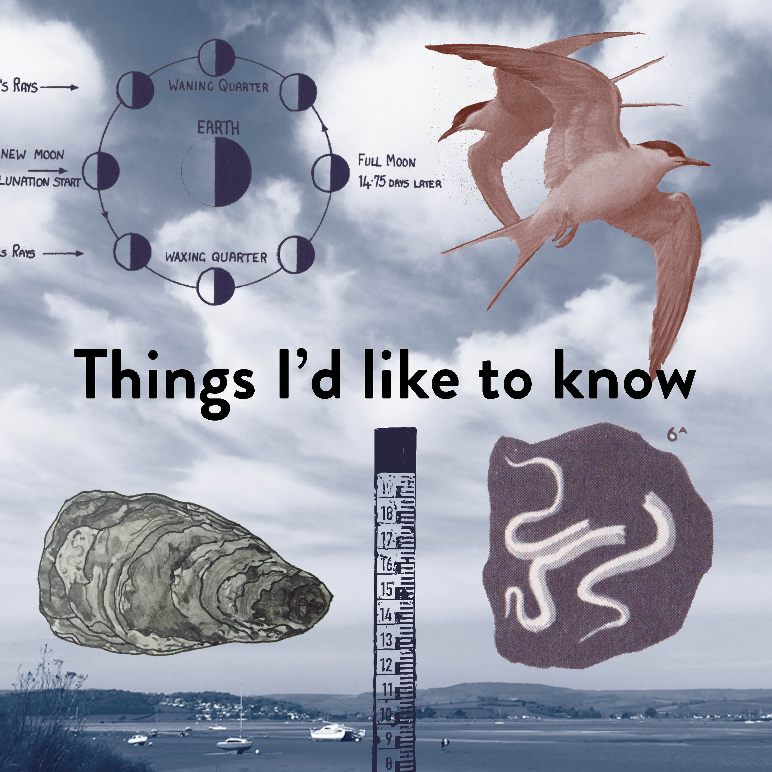 Things I'd like to know