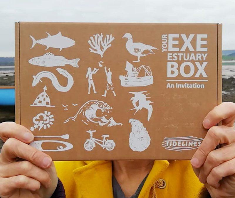 The Exe Estuary Box